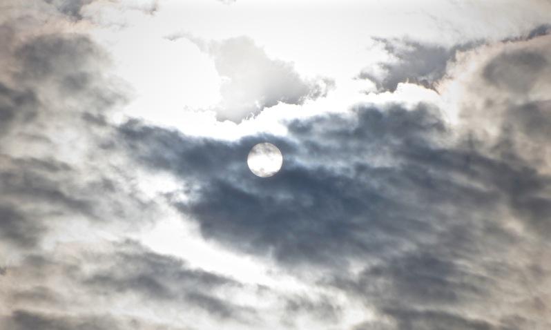 """The sun shines through"" by Tony Lobl"