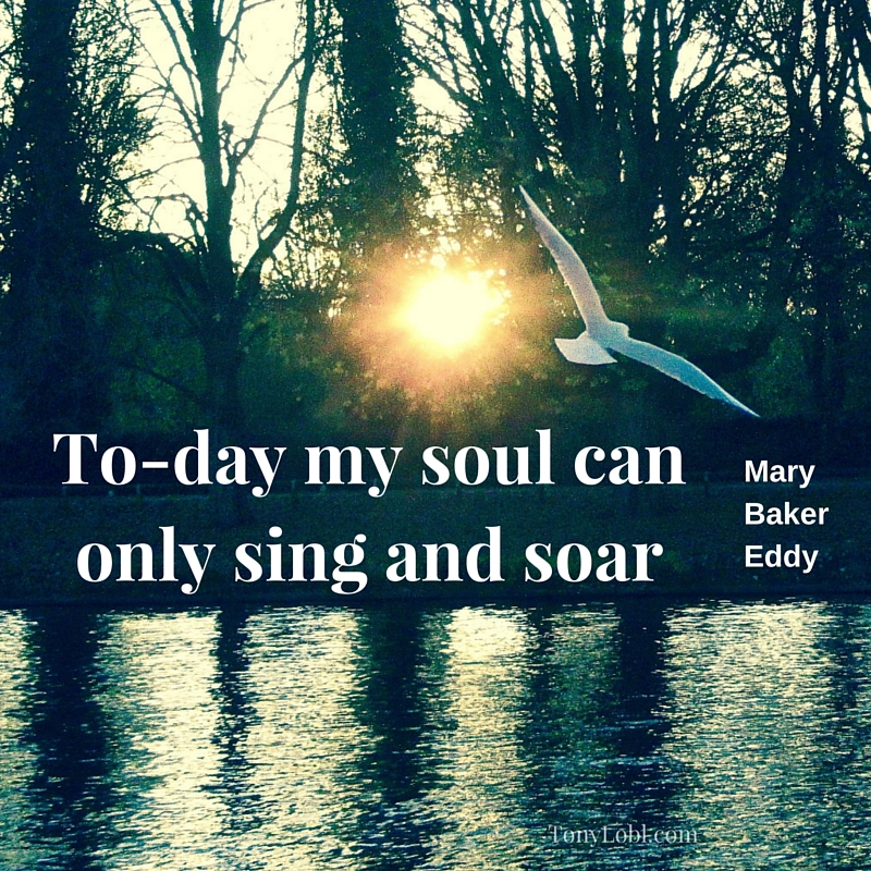 """""""Singing and soaring"""" by Tony Lobl."""