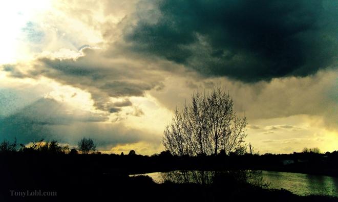 -Ready for raindrops- by Tony Lobl - web