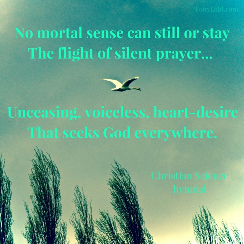 The flight of silent prayer%22 by Tony Lobl - web